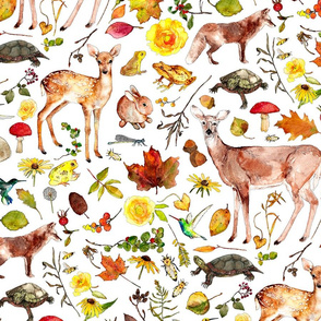 woodland flora and fauna in watercolor