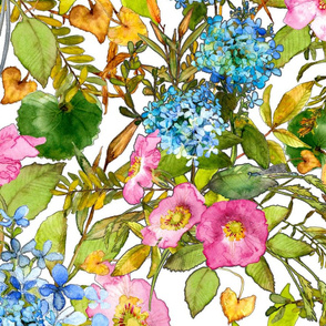 Watercolor pink woodland rose and blue hydrangea