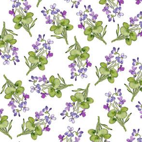 Watercolor purple woodland violet