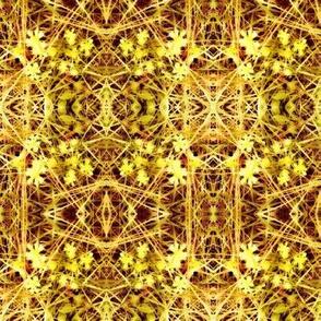 Mystic Daisy Yellow