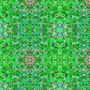Mystic Clover Green