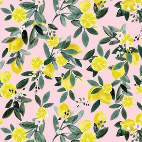 Dear Clementine lemons pink