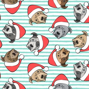 All the pit bulls - Santa hats - Christmas Dog - aqua stripes