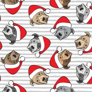 All the pit bulls - Santa hats - Christmas Dog - Grey Stripes
