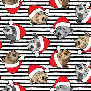 All the pit bulls - Santa hats - Christmas Dog (black stripes)