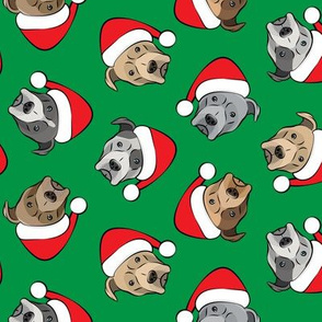 All the pit bulls - Santa hats - Christmas Dog (green)