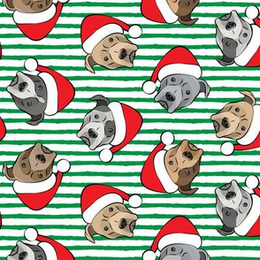 All the pit bulls - Santa hats - Christmas Dog (green stripes)
