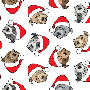 All the pit bulls - Santa hats - Christmas Dogs