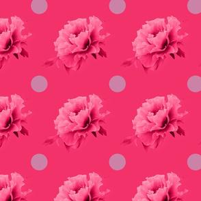 Polka dot peony in pink