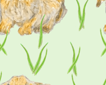Rbunnyandgrass_thumb