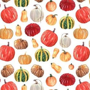 Colorful Pumpkins Pattern