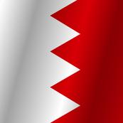 Flag of Bahrain flag