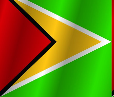 Flag-of-guyana_shop_preview