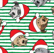 Rrr8230721_rpit-bulls-with-santa-hats-06_shop_thumb