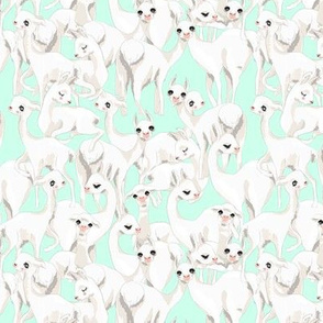 Minty Llama herd