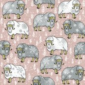 R5wintery-grey-white-musk-oxen-on-pantone-latte-cream_shop_thumb