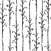 Rrberry-branches_shop_thumb