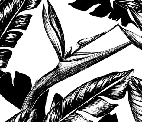 Rrblack_and_white_paradise_large_shop_preview
