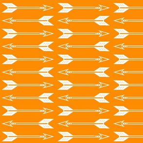 arrows // orange (90) C18BS