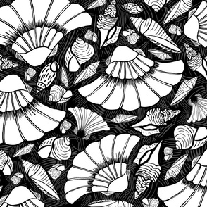 Scratchboard Sea Shell Collection, XL