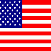 Flag of the USA United States