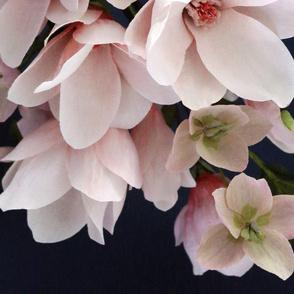Crepe Paper Magnolias & Hellebores
