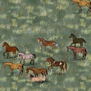 Elegant Horses in Grassy Pasture
