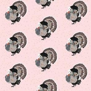 tom the fancy turkey
