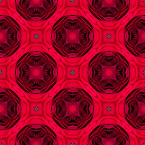 Red Roses Top in Circular Surface Pattern