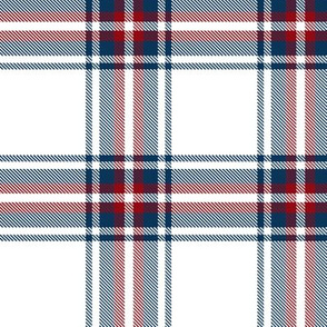 checkered blue red plaid