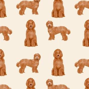 labradoodle dog pattern fabric - apricot labradoodle design, apricot dog, dog breed fabric, dog breeds fabric, cute dog -  light