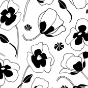 Black And White Poppies Pattern