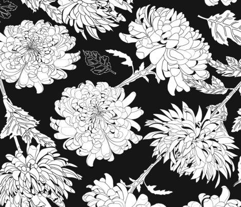 Rchrysantemumblackbg_shop_preview