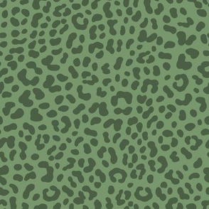 Leopard Print / Jungle Park