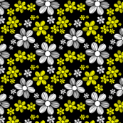 Yellow White Black Background Color Summer Daisy Flower Pattern