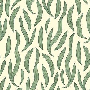 Leaves / Morris Garden