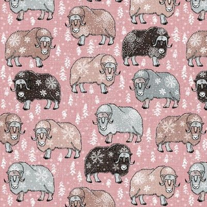 Wintery Mixed Musk-Oxen on blush pink V2