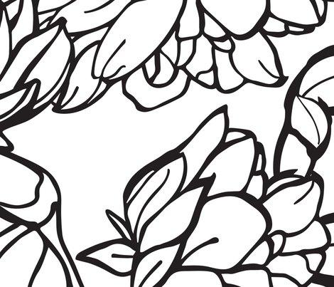 Rwild-roses-black_shop_preview