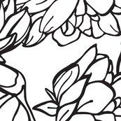 Rwild-roses-black_shop_thumb