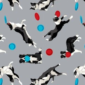 Border Collie Disc Dog fabric - disc dog, dog, dogs, agility dog, border collie fabric, black and white border collie dog, dog fabric by the yard -  grey