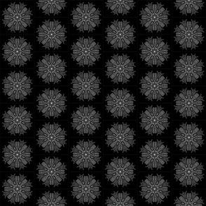 Mandala - Aster in White on Black