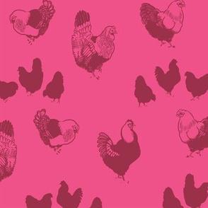 Hedemora Hens (hot pink)