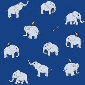 elephants on navy