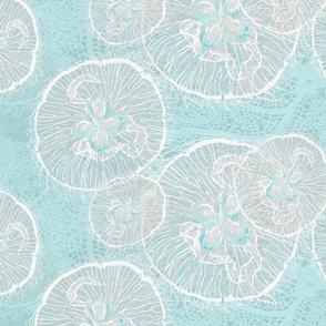 shoal moon jellies 2