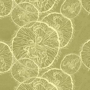 _1 moon jellies on coconut copy