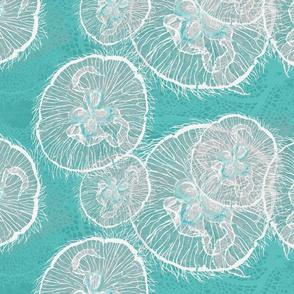 lagoon moon jellies