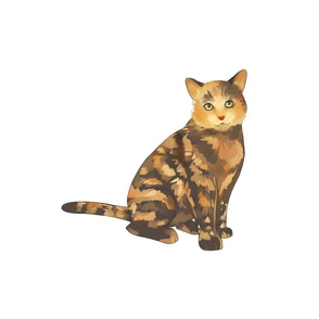 "18"" Tortoiseshell Cat Design"