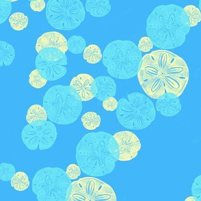 Blue Sand Dollar