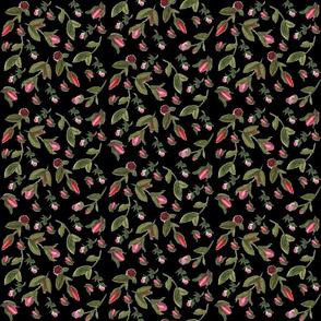 Rosebuds on Black