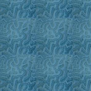 Brain Coral Blue